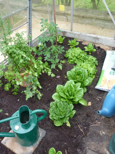 GardenEndMay1