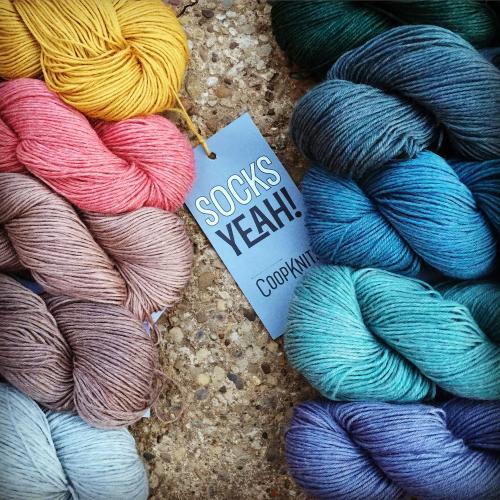 Coop_knits_socks_yeah_yarn